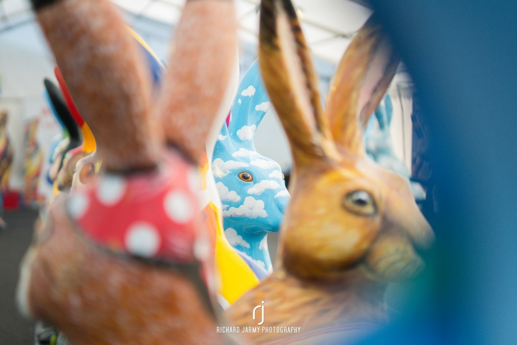 #GoGoHares18 GoGo Hares Norfolk